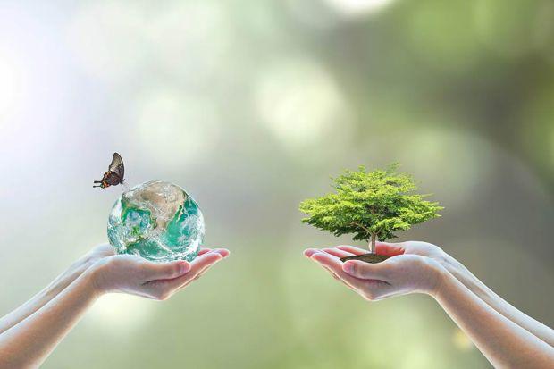 Photo: Baum und Weltkugel in der Hand