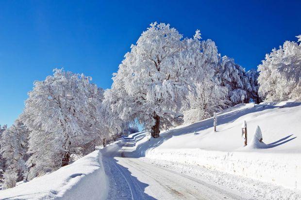 Photo: Winterlandschaft